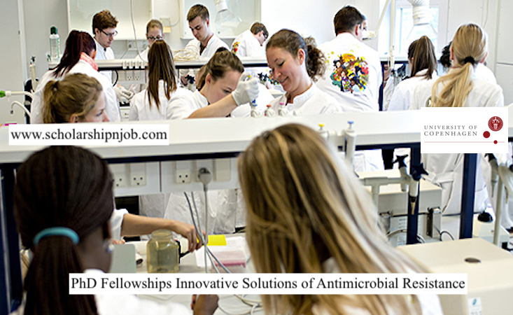 Fully Funded PhD Fellowships Innovative Solutions of Antimicrobial Resistance - University of Copenhagen, Denmark
